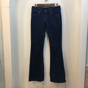 Express X2 Fit and Flare Jeans